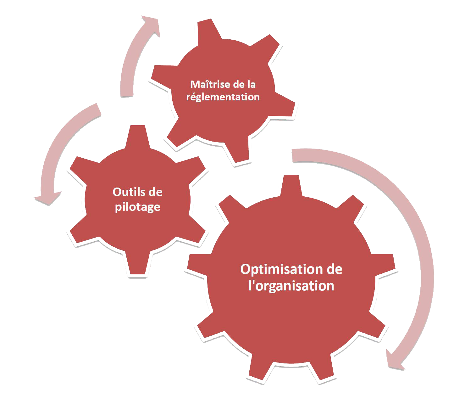 Module-3-Optimisation-organisation-internationale